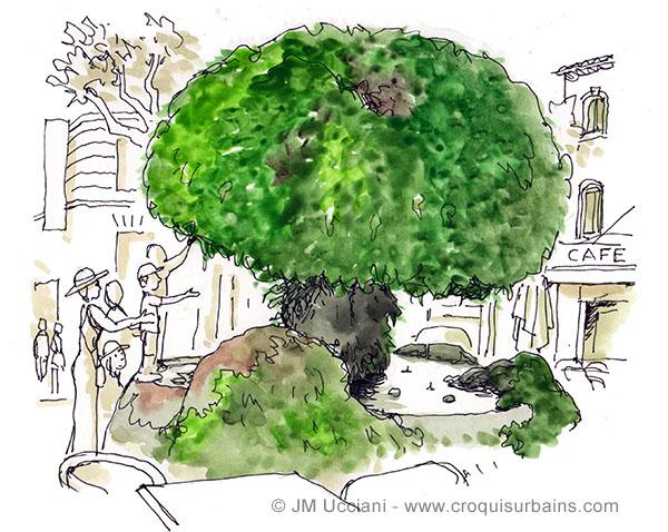 fontaine moussue salon de provence